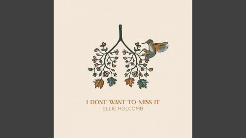 Checkout new song I don't want to miss it lyrics penned by Ellie Holcomb, Cason Cooley and Thad Cockrell
