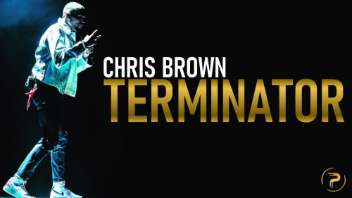 Checkout new song Terminator lyrics are penned and sung by Chris brown